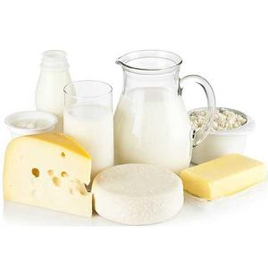 mini-impianto-di-produzione-prodotti-lattiero-caseari